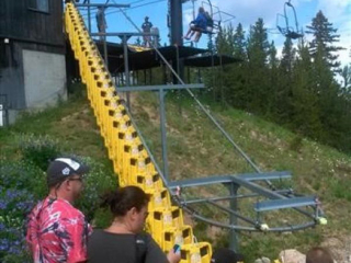 Patrons wait for alpine sleds being delivered by an overhead conveyor. The application accumulates and delivers.