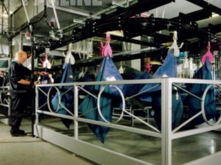 PAC-MAX overhead conveyor is used for mail bag handling and sortation. Mail bags are carried using gravity clamps.