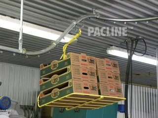 Boxes for packing peaches are transported by conveyor.