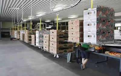 Overhead Conveyor Improves Carton Delivery