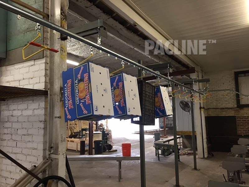 Hanging cartons on conveyor in packing shed.
