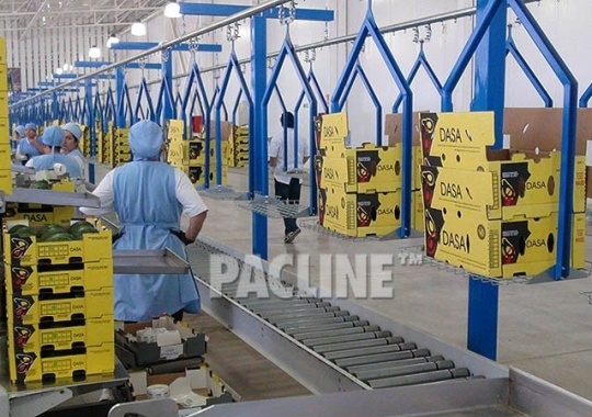 Stacked cartons for produce packing are moved by overhead conveyor.