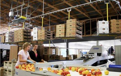 Overhead Carton Delivery System Improves Safety and Productivity