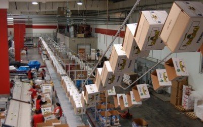 Conveyor System Frees up Floor Space for Produce Packing House