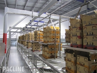 PAC-LINE™ enclosed track conveyor for produce packing operations.
